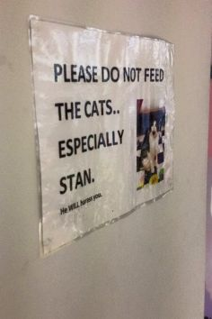 DON'T FEED STAN